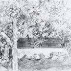 "Across The Way - pencil on paper · 6.5"" x 8"" - Sold"