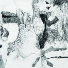 """Musing Why - Pencil on acid-free paper, 4.5"""" x 6.25"""""""